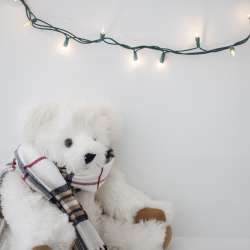 teddy-and-lights-2